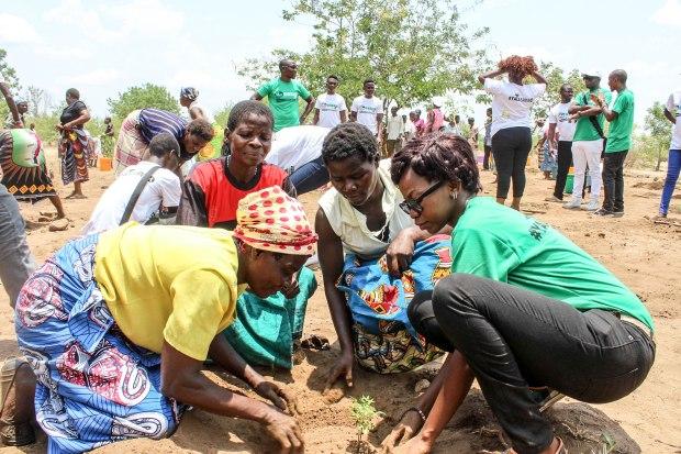 Pic 5 - Tree Planting 03